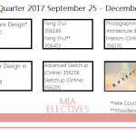 Fall 2017 MIA Electives